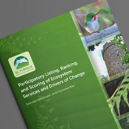 El Yunque Ecosystem Services